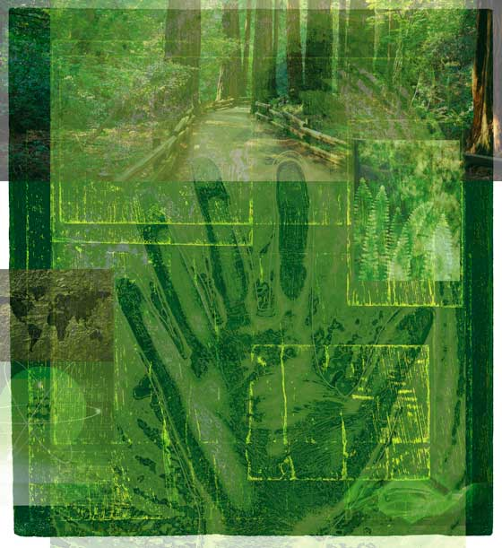 Green collage picture with woods, energy hand, earth...